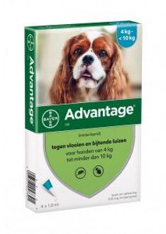 Advantage Nr. 100 vlooienmiddel (4 tot 10kg) hond Per verpakking